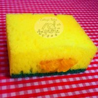 Shredded Soap & Sponge Trick