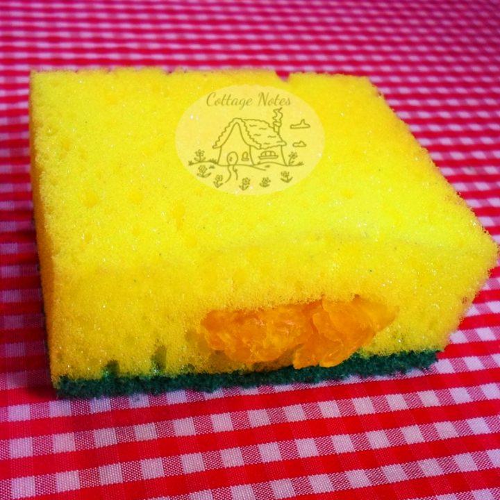 Shredded Soap & Sponge Trick